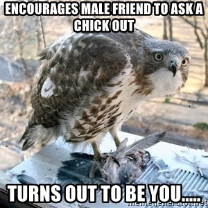 Hawkward - encourages male friend to ask a chick out turns out to be you.....