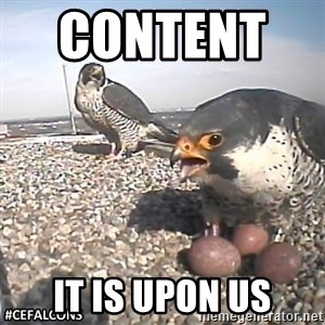 #CEFalcons - Content      it is upon us