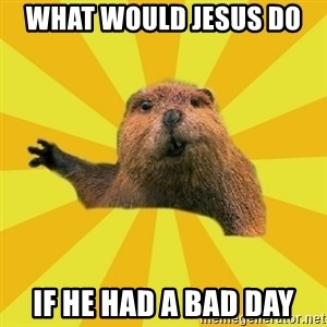 grumpy beaver - what would jesus do  if he had a bad day