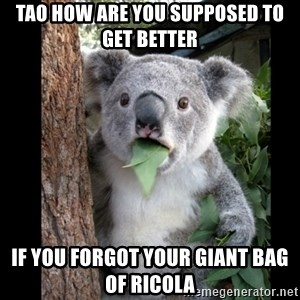Koala can't believe it - tao how are you supposed to get better if you forgot your giant bag of ricola