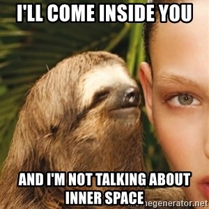 The Rape Sloth - i'll come inside you and i'm not talking about inner space