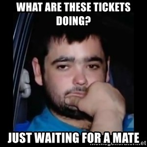 just waiting for a mate - What are these tickets doing? Just waiting for a mate