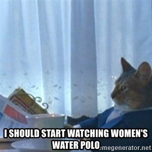 Sophisticated Cat Meme -  I should start watChing women's water polo