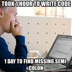 Computer Programmer - took 1 hour to write code 1 day to find missing semi-colon