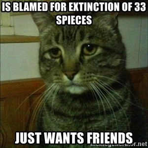 Depressed cat 2 - Is blamed for extinction of 33 spieces Just wants friends