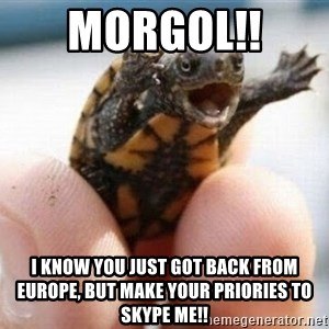angry turtle - Morgol!!  I know you just got back from Europe, but make your PRIORIES to skype me!!