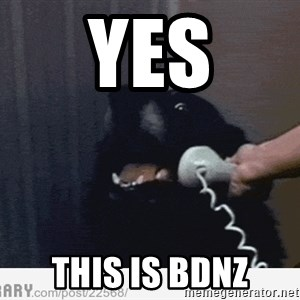 Hello This is Dog - YES THIS is BDNZ