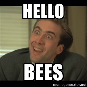 Nick Cage - Hello BEes