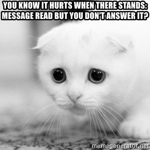 Sadcat - You know it hurts when there stands: message read but you don't answer it?