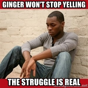 The Struggle Is Real - Ginger won't stop yelling The Struggle is real