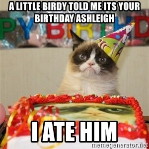 Grumpy Cat Birthday hat - A little birdy told me its your birthday ashleigh i ate him