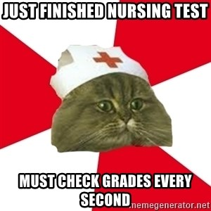 Nursing Student Cat - JuST FINISHED NURSING TEST MUST CHECK GRADES EVERY SECOND