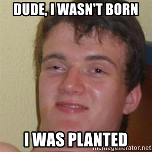 really high guy - Dude, i wasn't born i was planted