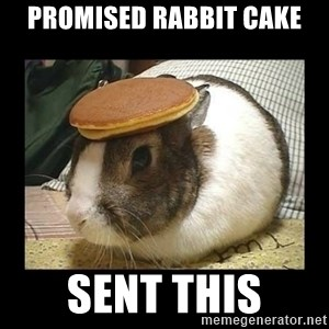 Bunny with Pancake on Head - Promised Rabbit cake sent this