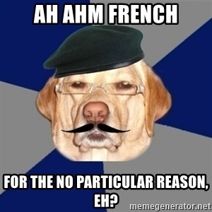 Perro machista - ah ahm french for the no particular reason, eh?