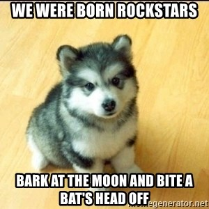 Baby Courage Wolf - we were born rockstars bark at the moon and bite a bAt's head off