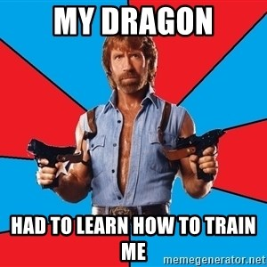 Chuck Norris  - my dragon had to learn how to train me