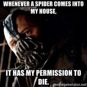 Bane Permission to Die - Whenever a Spider comes into my house, It has my permission to die.