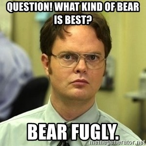 Dwight Schrute - Question! What kind of bear is best? Bear fugly.