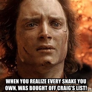 Frodo  -  when you realize every snake you own, was bought off craig's list!