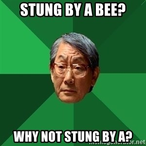High Expectations Asian Father - stung by a bee? why not stung by a?