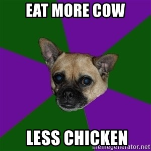 WTF dog - Eat More Cow  Less Chicken