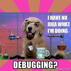 I have no idea what I'm doing dog -  debugging?