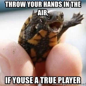 angry turtle - Throw your hands in the air, if youse a true player