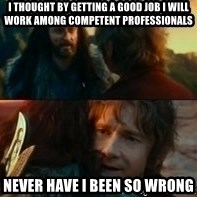 Never Have I Been So Wrong - I thought by getting a good job i will work among competent professionals never have i been so wrong