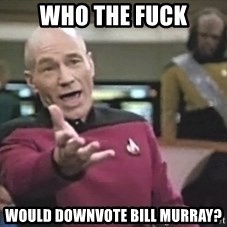 Captain Picard - who the fuck would downvote bill murray?