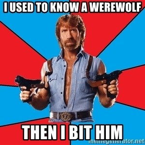 Chuck Norris  - i used to know a werewolf  then i bit him