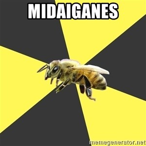 British High School Honeybee - midaiganes