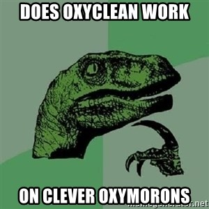 Philosoraptor - does oxyclean work  on clever oxymorons