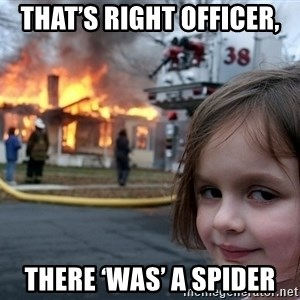Disaster Girl - That's right officer, there 'was' a spider