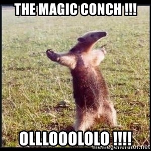 oso hormiguero thug - THE MAGIC CONCH !!! OLLLOOOLOLO !!!!