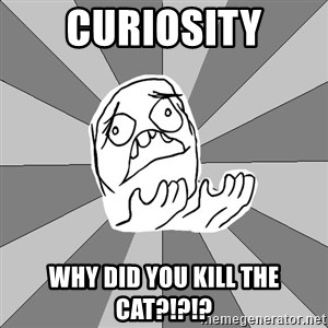 Whyyy??? - CURIOSITY WHY DID YOU KILL THE CAT?!?!?