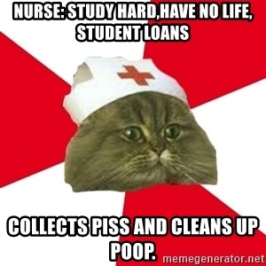 Nursing Student Cat - Nurse: Study hard,have no life, student loans collects piss and cleans up poop.