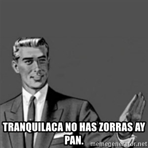 Correction Guy -  TRANQUILACA NO HAS ZORRAS AY PAN.