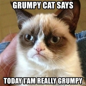 Grumpy Cat  - GRUMPY CAT SAYS TODAY I'AM REALLY GRUMPY