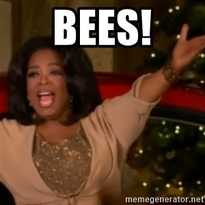 The Giving Oprah - bees!