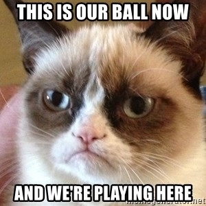 Angry Cat Meme - THIS IS OUR BALL NOW AND WE'RE PLAYING HERE
