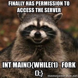plotRacoon - Finally has permission to access the server  int main(){while(1)   fork();}