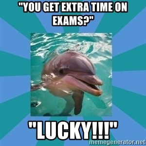 """Dyscalculic Dolphin - """"You get extra time on exams?"""" """"Lucky!!!"""""""