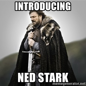 ned stark as the doctor - INTRODUCING NED STARK