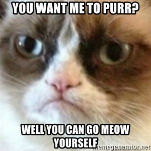 angry cat asshole - You want me to purr? Well you can go meow yourself