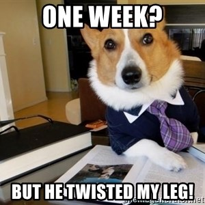 Dog Lawyer - One week? But he twisted my leg!