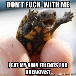 angry turtle - don't fuck  with me i eat my own friends for breakfast