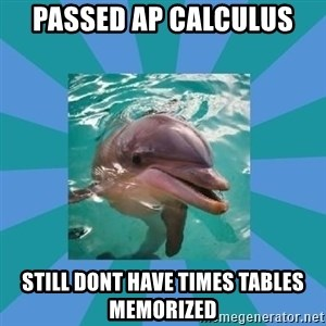 Dyscalculic Dolphin - Passed ap calculus still dont have times tables memorized