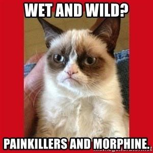 No cat - WET AND WILD? PAINKILLERS AND MORPHINE.