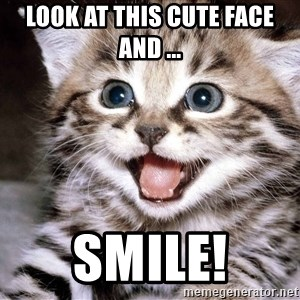 HAPPY KITTEN - Look at this cute face and ... Smile!